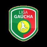 logo liga gaucha